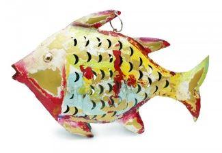 Fisch multicolor
